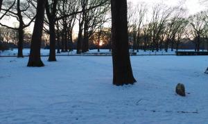 De zon komt erbij