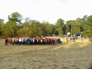 Een flinke groep in de zandbak (foto Toon)