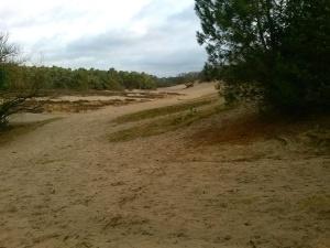 Omhoog,omlaag en banjeren door het losse zand