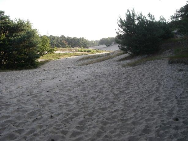 Bultjes en mul zand on overvloed!